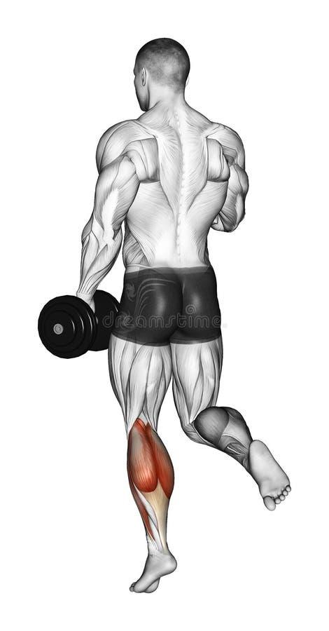 exercising Suba en los dedos del pie de una situación del pie libre illustration