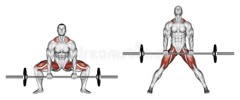 exercising Sumo de Deadlifts ilustración del vector