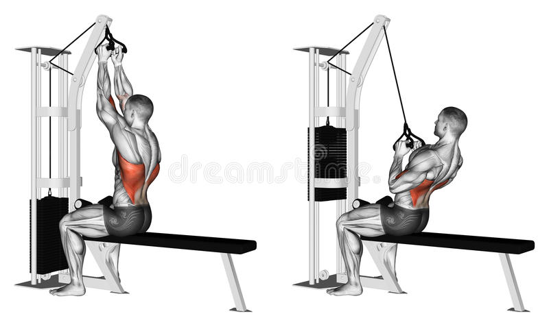 Exercising. Thrust of the upper block parallel grip royalty free stock image