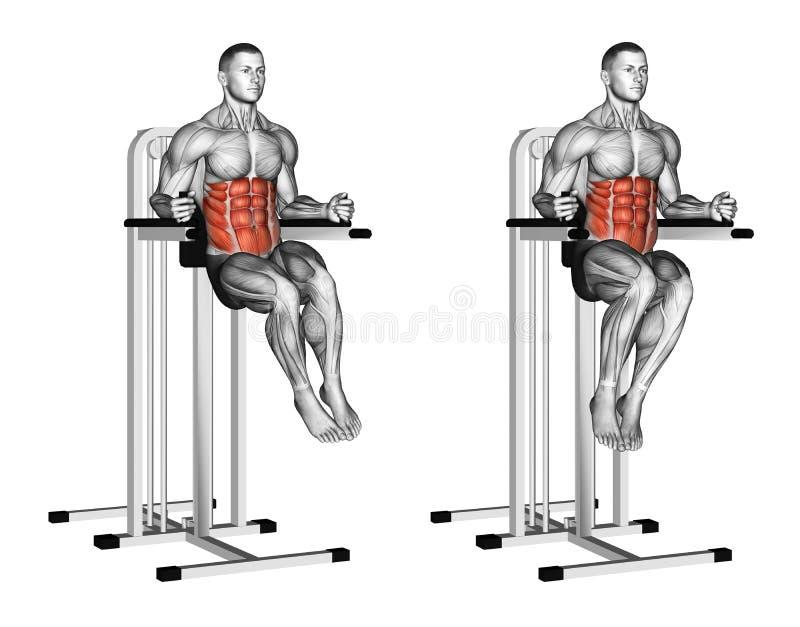 exercitar Aumentos oblíquos em barras paralelas