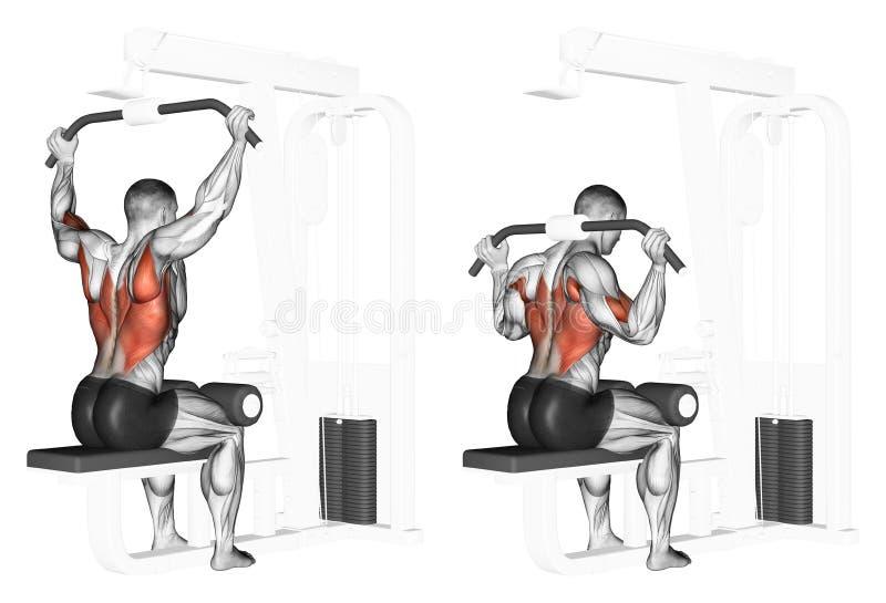 exercitar Extremidade do bloco superior do pescoço ilustração royalty free