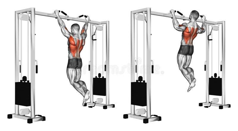 exercitar Levantando a mão larga do aperto no undergrip da barra transversal