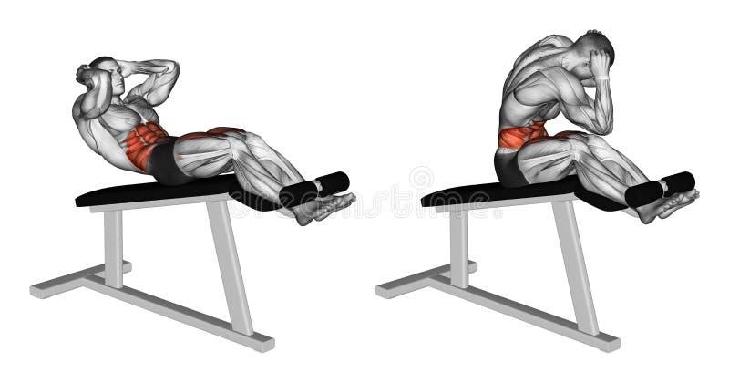 exercitar Torção para girar sobre a cadeira romana ilustração stock