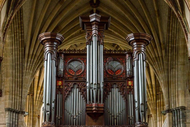 Exeter katedra - organ i sufit zdjęcia royalty free