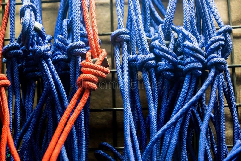 Exhibición colorida de la cuerda foto de archivo