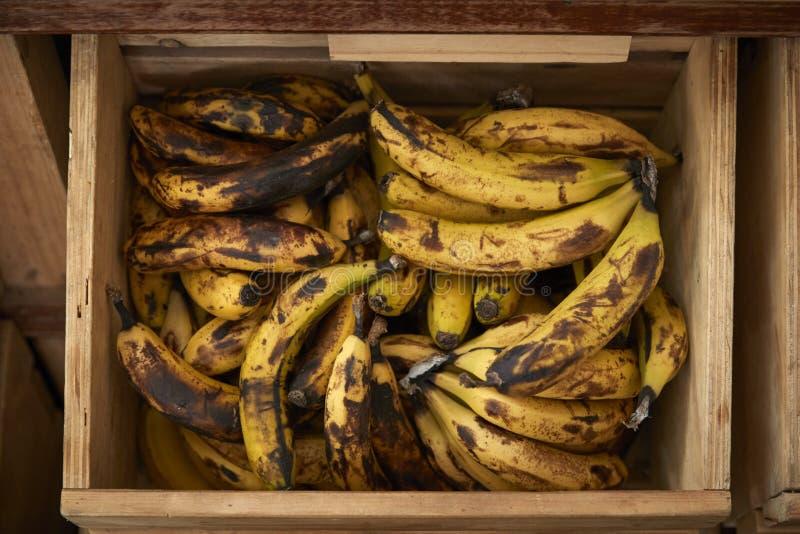 Exhibición de plátanos en colmado libre del envase de plástico sostenible fotografía de archivo