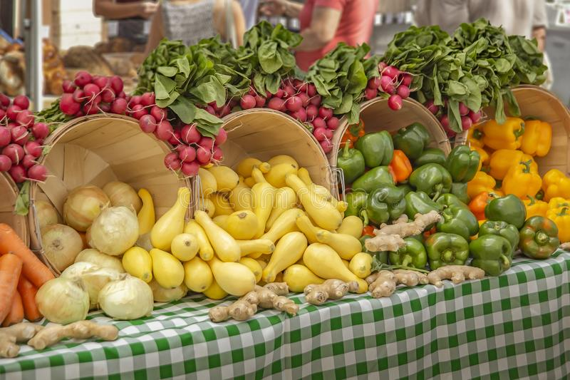 Exhibición hermosa de rábanos, de la calabaza amarilla, de cebollas, del jengibre y de una verdad de pimientas coloreadas foto de archivo libre de regalías