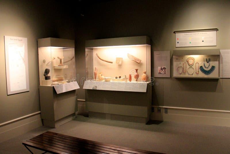 Exhibiciones extensas de artefactos egipcios, del instituto de la historia y del arte, 2016 foto de archivo