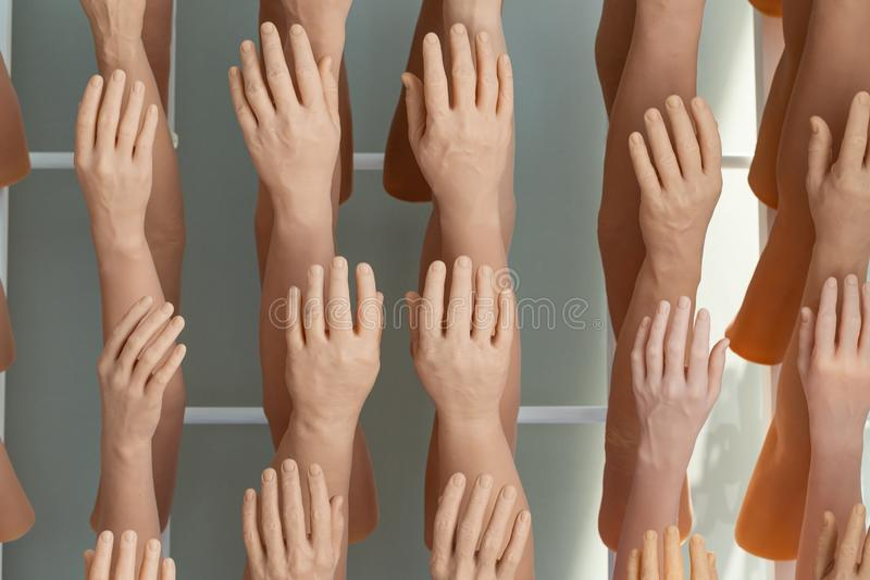 Exhibition man`s and women`s silicone prosthesis hands stock photos