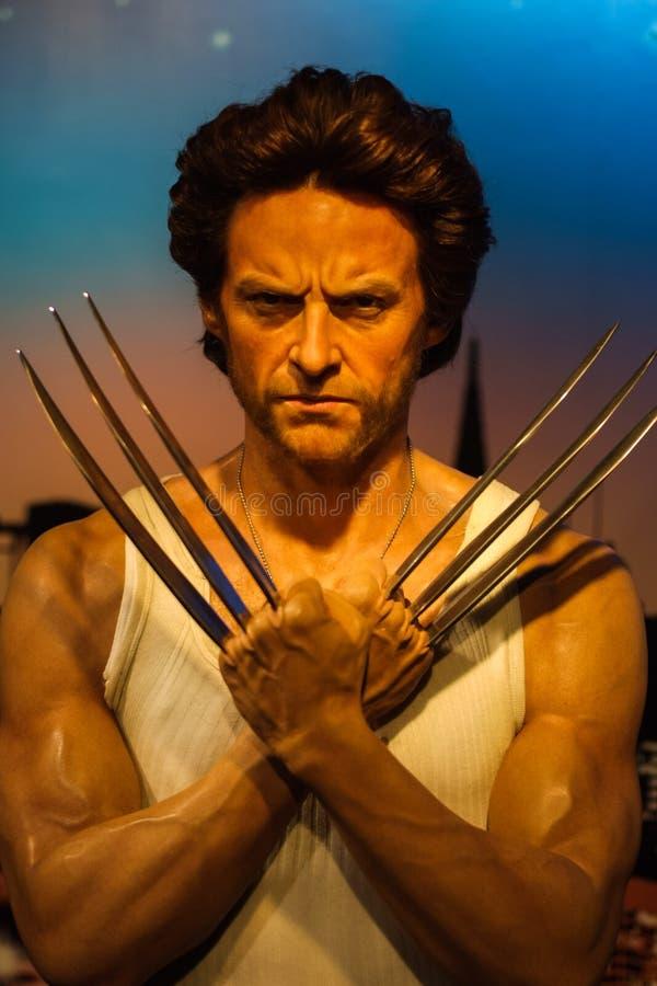 Exibição do modelo de cera de Hugh Jackman (Wolverine) imagens de stock