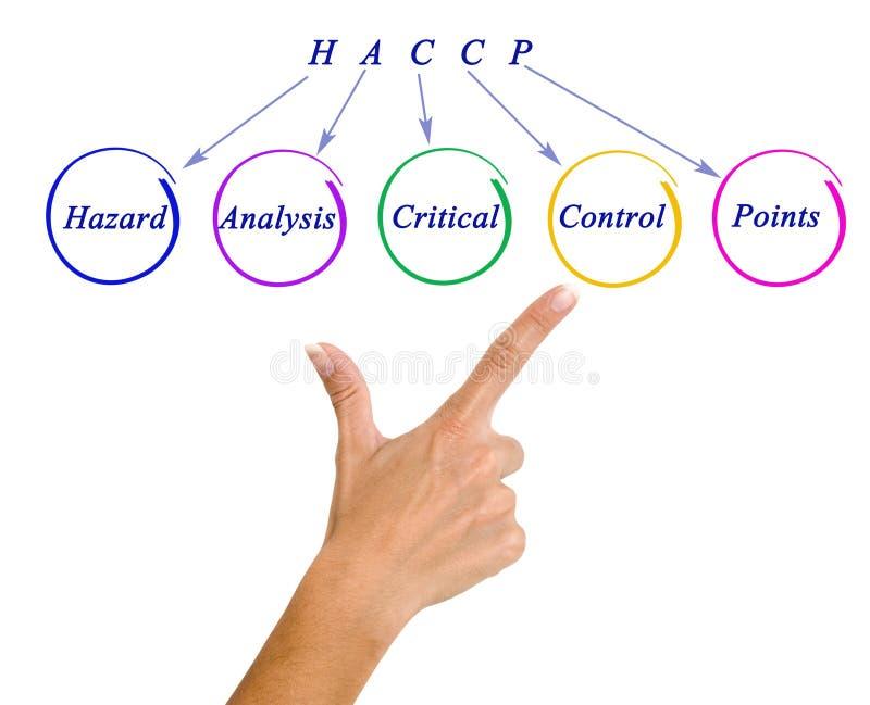 Exigências reguladoras de HACCP fotos de stock