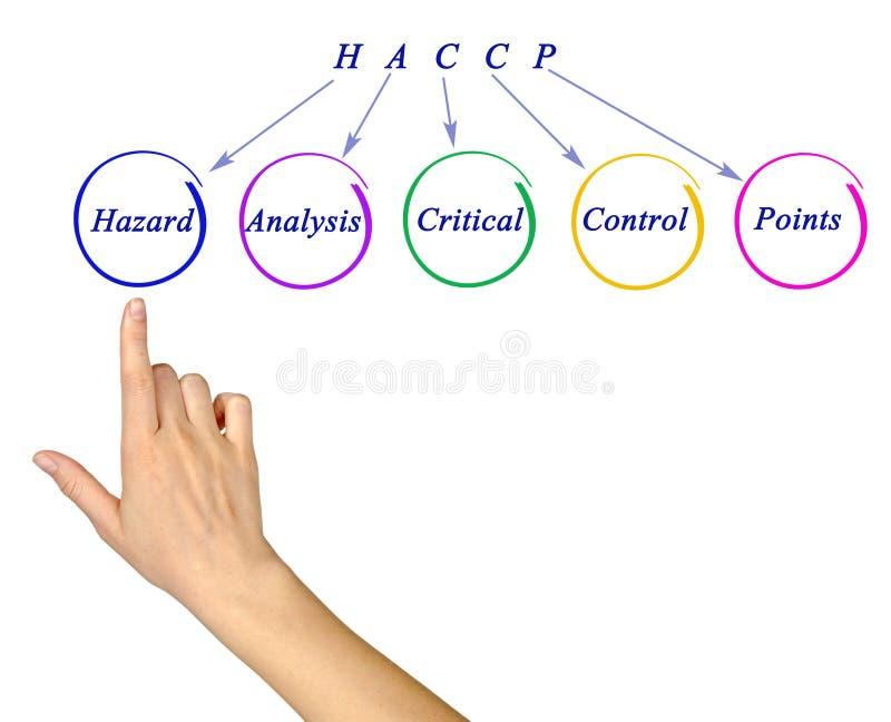 Exigências reguladoras de HACCP fotografia de stock