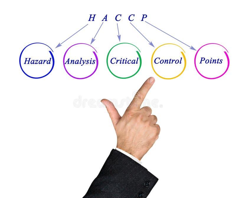 Exigências reguladoras de HACCP foto de stock