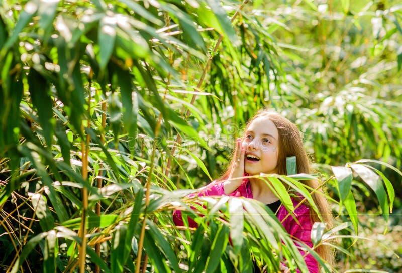 Exkursion zum botanischen Garten Anlagen gewachsen f?r Anzeige auf ?ffentlichkeit M?dchenweg im botanischen Garten Genie?en der N lizenzfreies stockfoto
