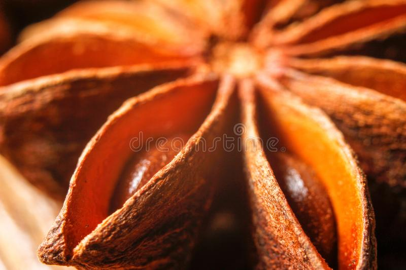 Exotic asian spice star anise stock photography