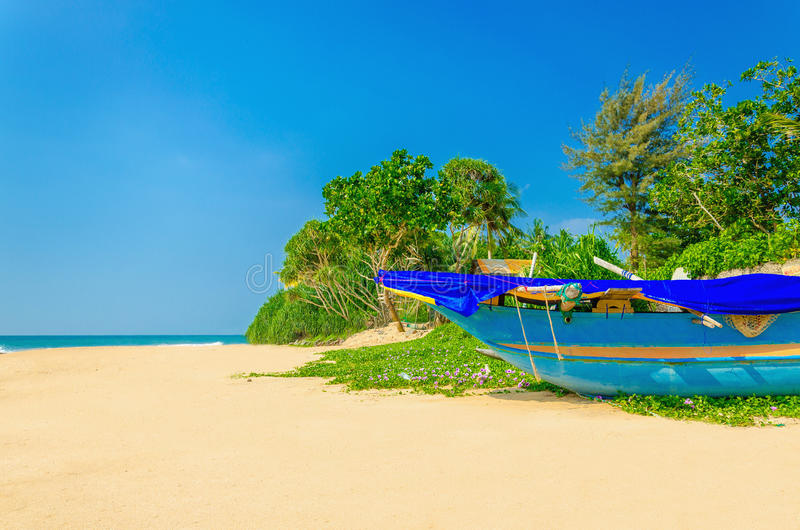 Exotic beach with colorful boat, tall palm trees royalty free stock image