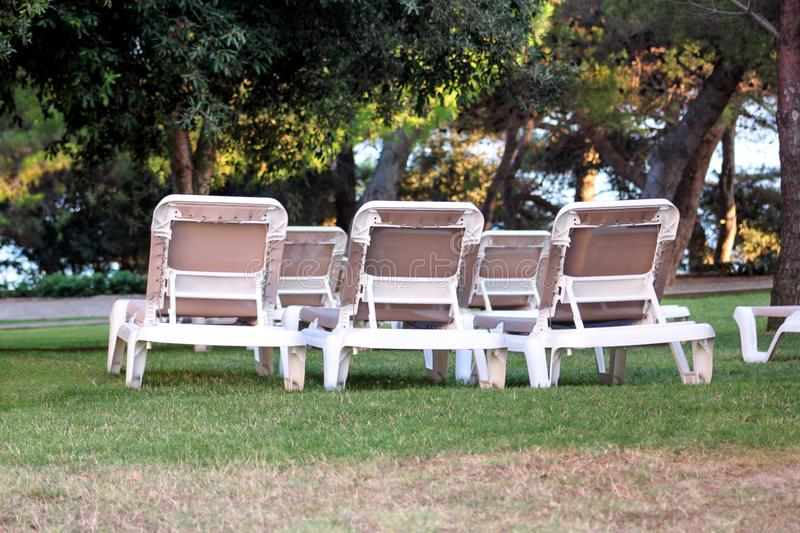 Exotic beach on mediterranean sea, sunbeds for sunbathing and relax on grass in tropical garden of luxury resort hotel. Sun loungers on lawn waiting for stock photo