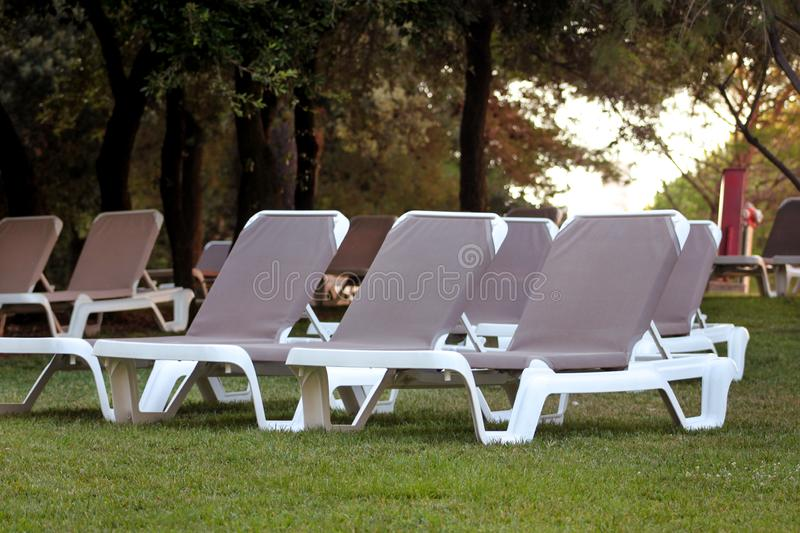 Exotic beach on mediterranean sea, sunbeds for sunbathing and relax on grass in tropical garden of luxury resort hotel. Sun loungers on lawn waiting for royalty free stock photos