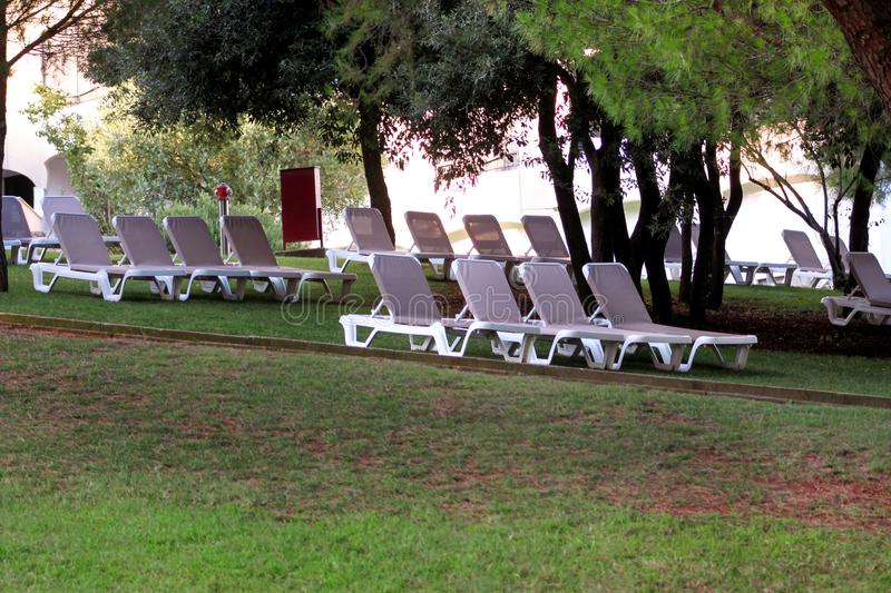 Exotic beach on mediterranean sea, sunbeds for sunbathing and relax on grass in tropical garden of luxury resort hotel. Sun loungers on lawn waiting for stock image