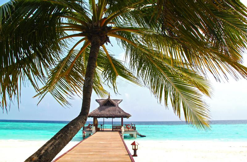 Exotic beach with overwater bungalow royalty free stock photos