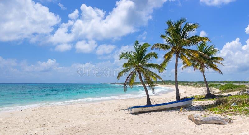 Download Exotic beach paradise stock photo. Image of coastline - 39507172