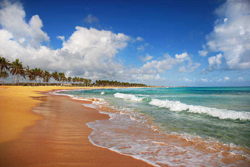 Download Exotic Beach in Punta cana stock image. Image of coco - 10022799