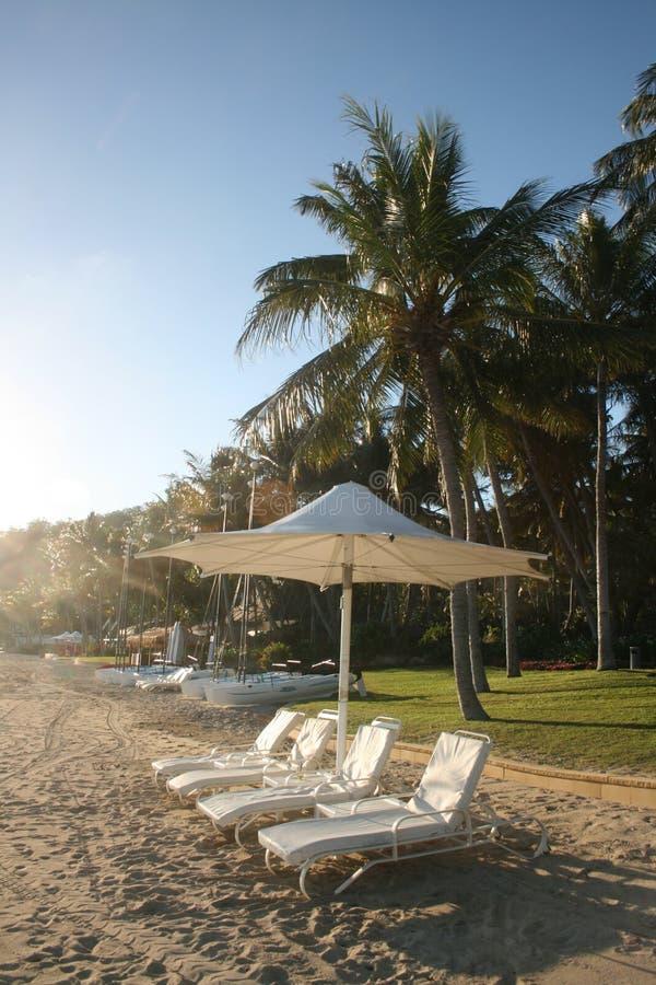 Download Exotic beach resort stock image. Image of ocean, escape - 16832955