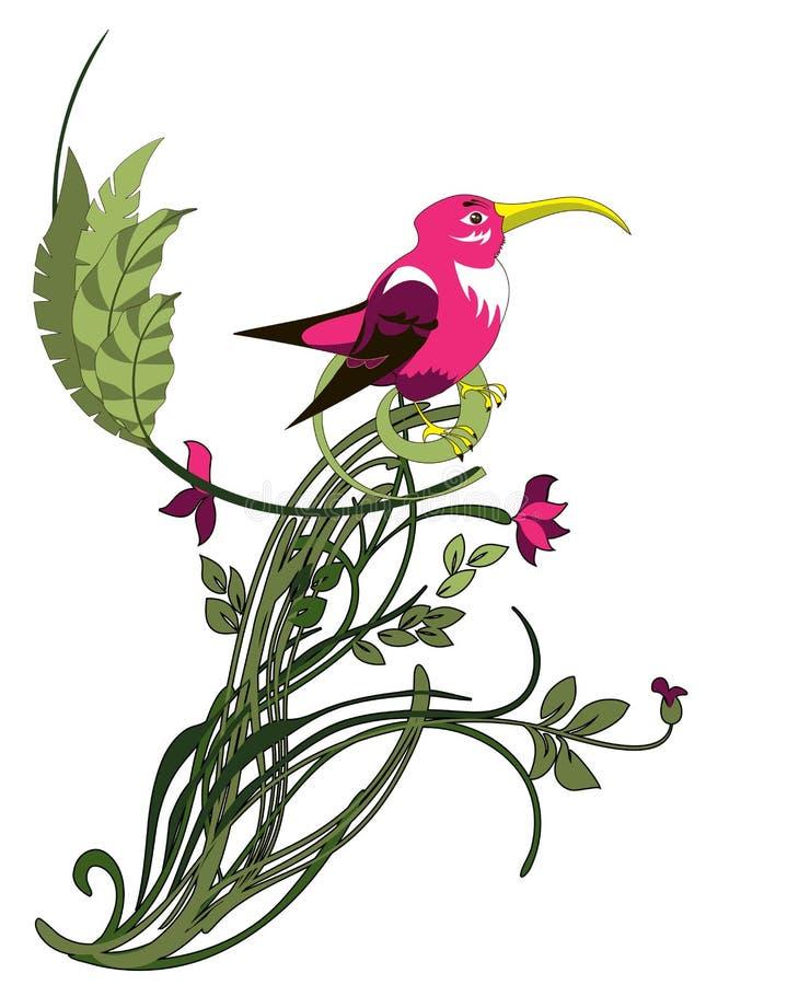 Exotic bird royalty free illustration