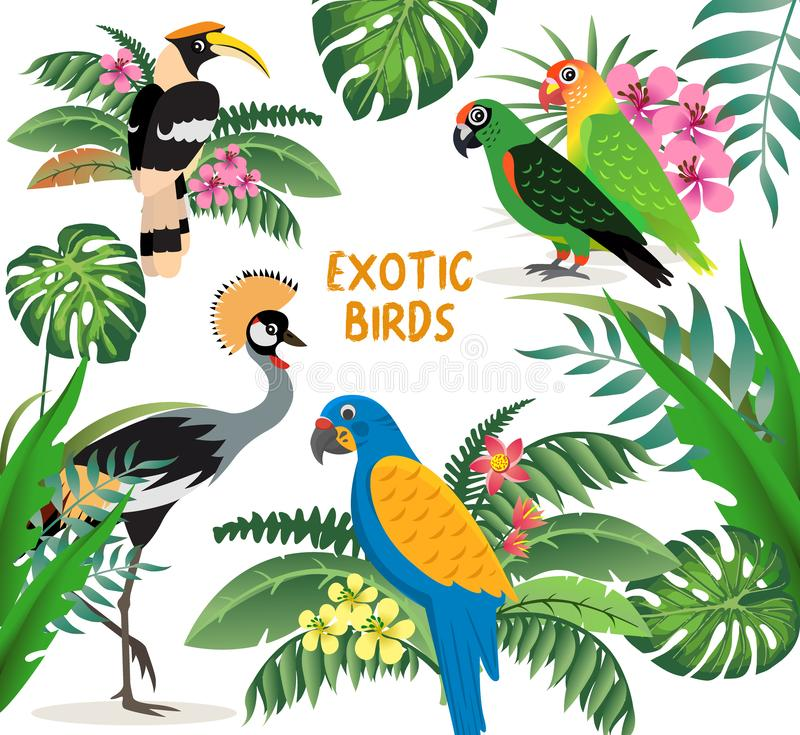Exotic birds set, crowned crane, colorful parrots lovebirds and blue with yellow wings macaw, friendly great hornbill vector illustration