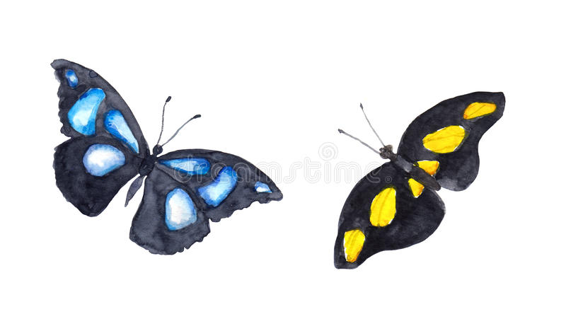Exotic butterflies. Watercolor. Hand painted vibrant drawing stock photo