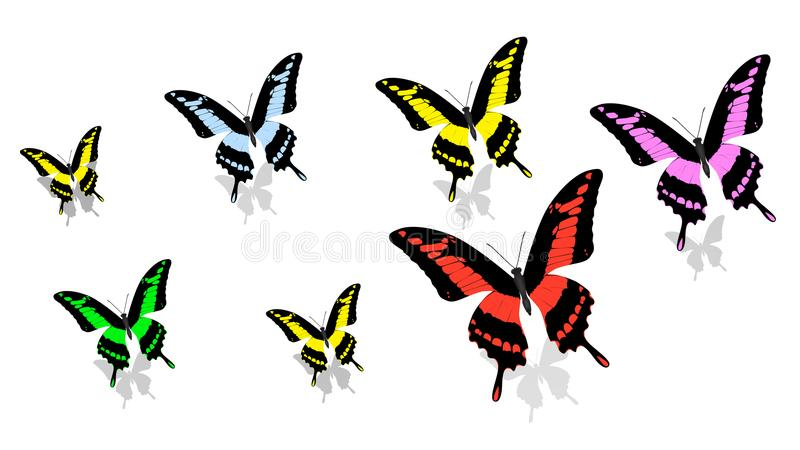 Exotic butterfly of different size and color, random order, top view. Exotic butterfly of different size and color, in random order, top view royalty free illustration