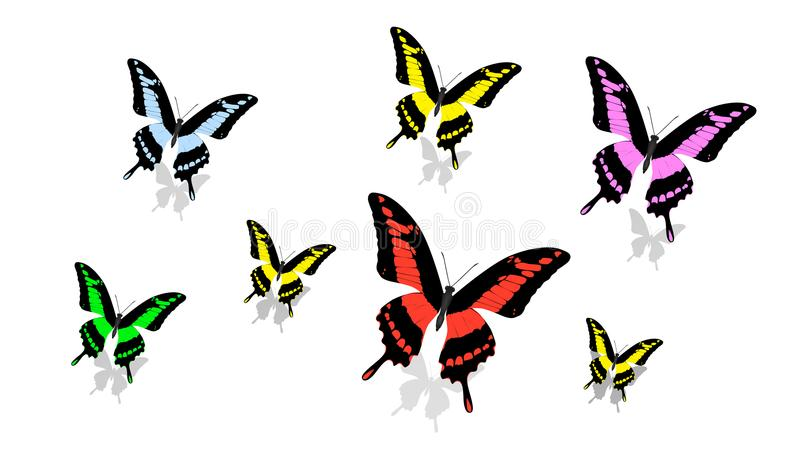 Exotic butterfly of different size and color, random order, top view. Exotic butterfly of different size and color, in random order, top view stock illustration