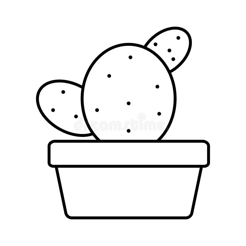 Exotic cactu plant in square ceramic pot. Vector illustration design vector illustration