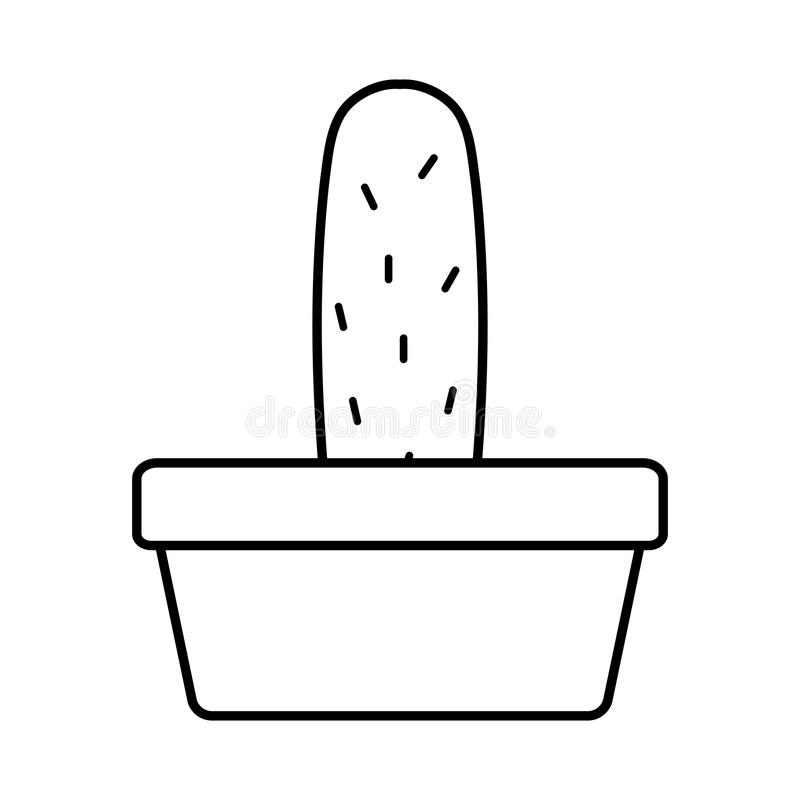Exotic cactu plant in square ceramic pot. Vector illustration design stock illustration