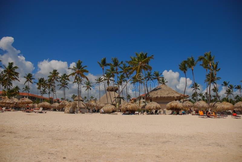 Exotic carribean beach, Punta Cana stock photo
