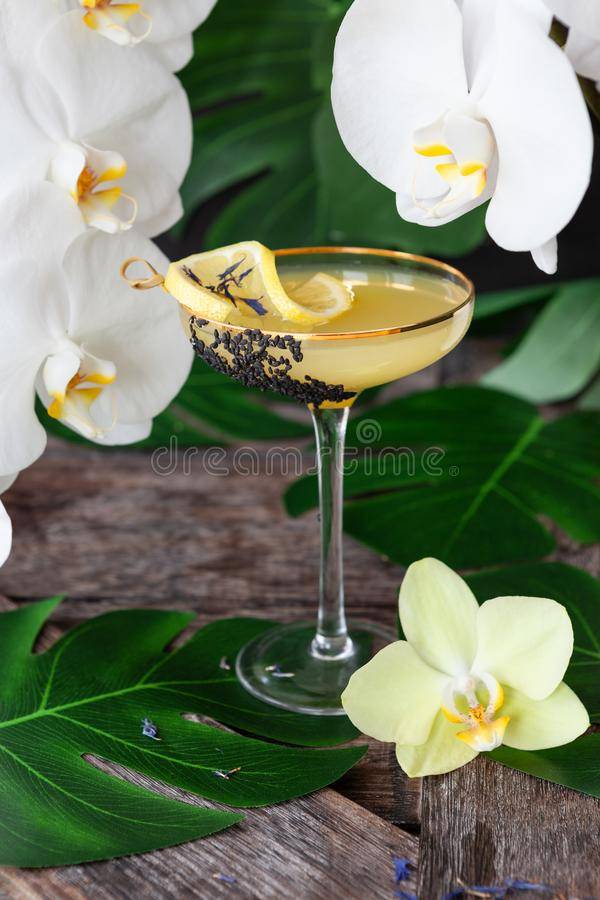 Exotic cocktail with orchids stock images