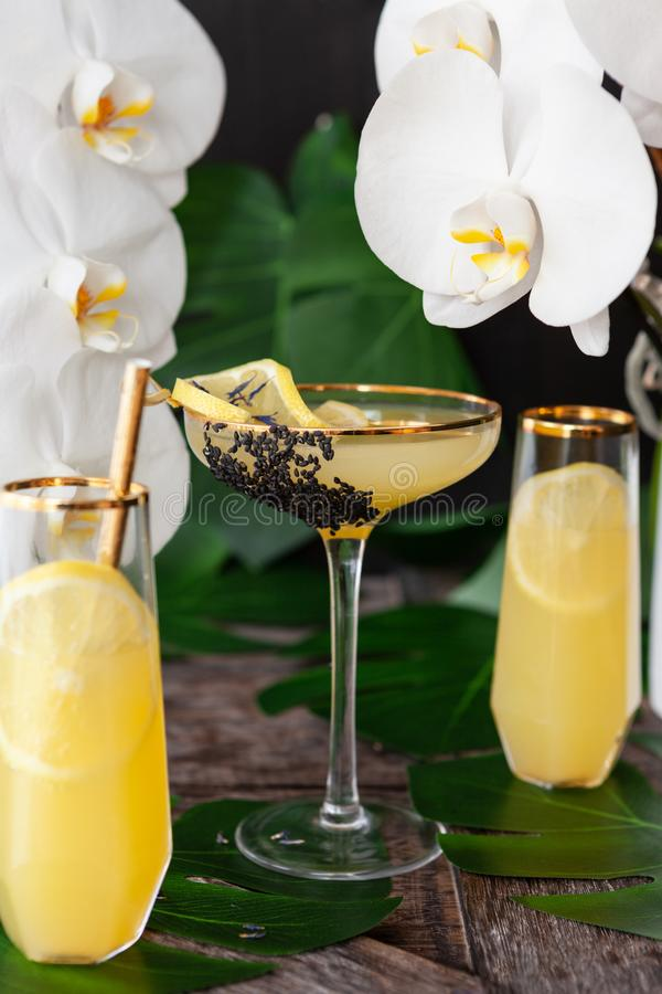 Exotic cocktail with orchids. Elegant, exotic cocktail with lush fresh orchids stock image