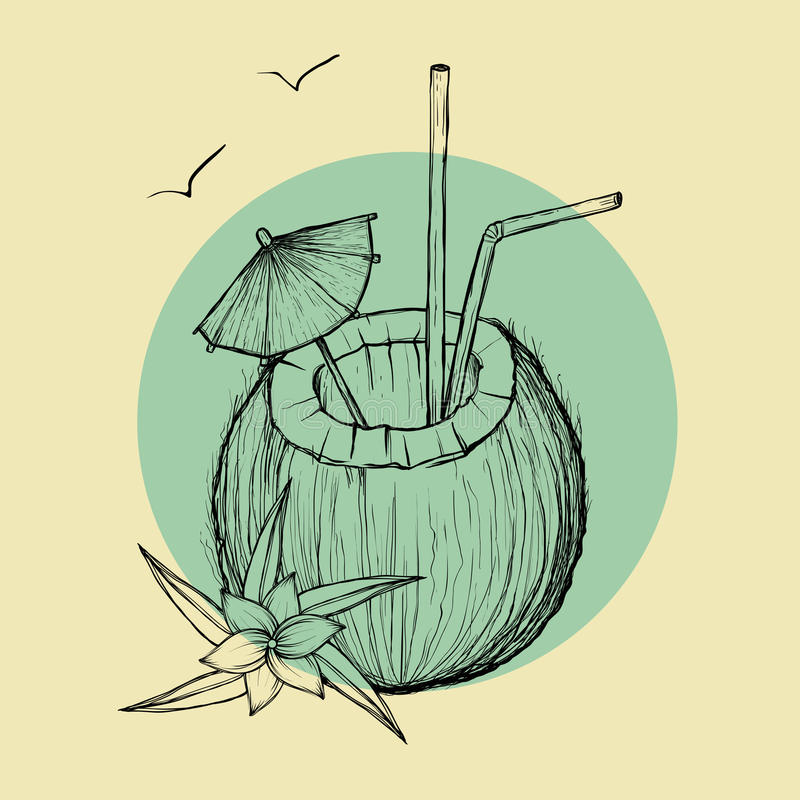 Download Exotic Coconut Cocktail. Vector Sketch Illustration Stock Vector - Illustration of nature, palm: 90699255