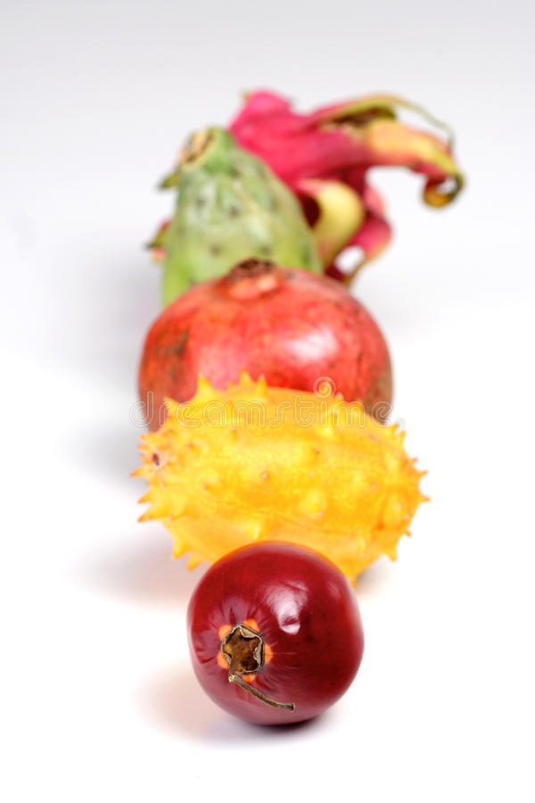 Exotic composition. Composition of exotic fruits stock photography