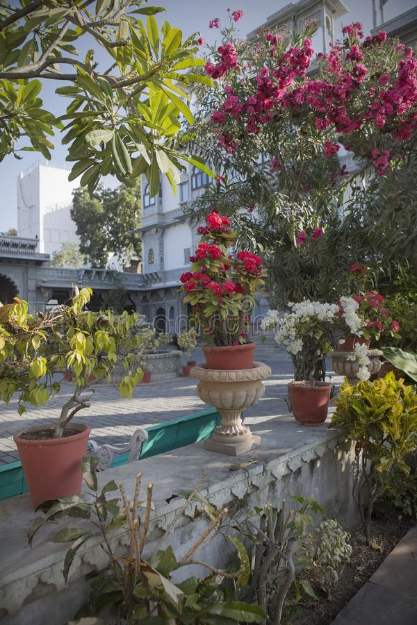 Exotic Designed Garden. Landscape Design Of The Indian Garden. Care Of The  Internal Yard, And The Cultivation Of Exotic Plants. Elements Of Garden  Design.
