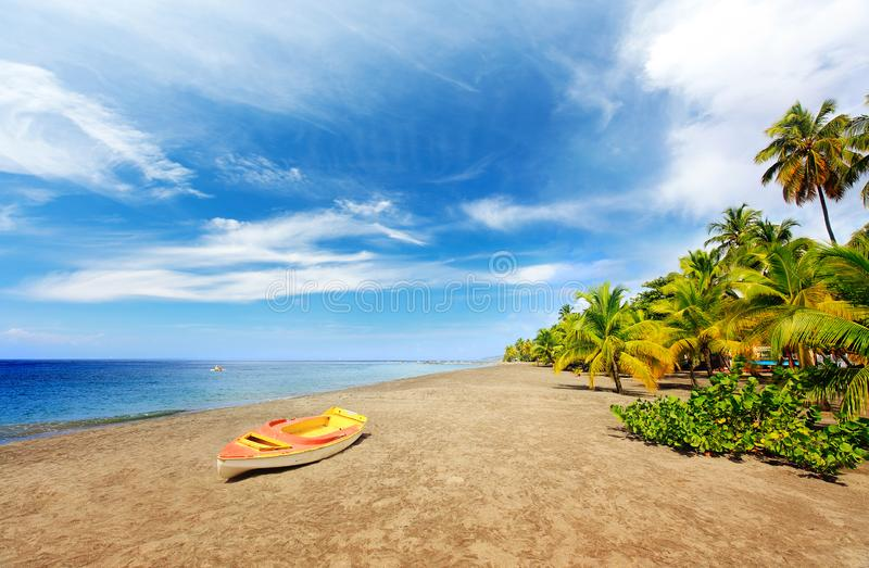 Exotic destination in Caribbean. Discover Grande Anse Le Coin Beach, Le Carbet royalty free stock images