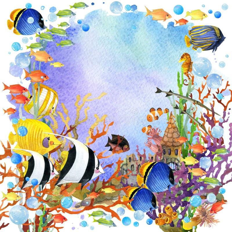 Exotic Fish, coral reef. Underwater world. coral reef fish watercolor illustration algae, unusual sea fauna, sea shells, anemones and decoration marine theme stock illustration