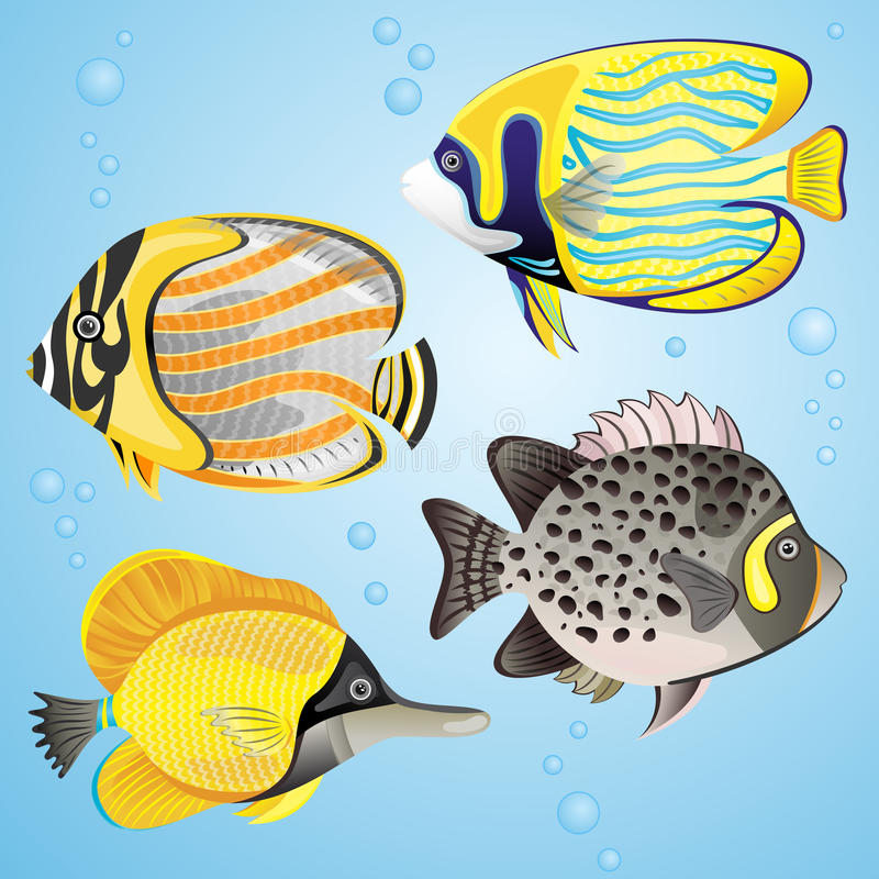 Download Exotic fish set stock vector. Image of animal, painting - 25821026