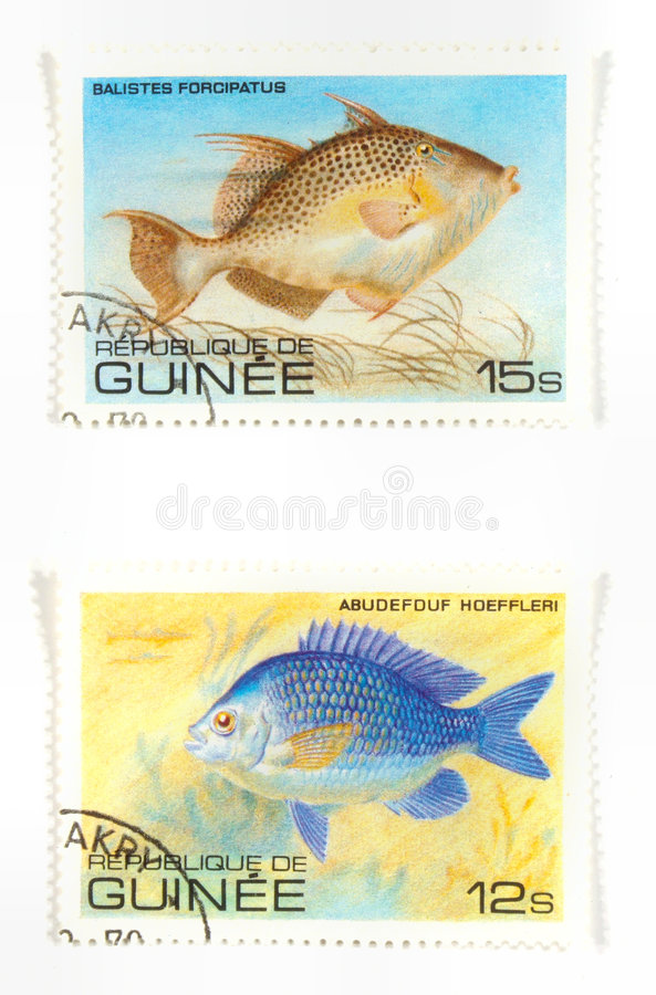Exotic fish on stamps royalty free stock images