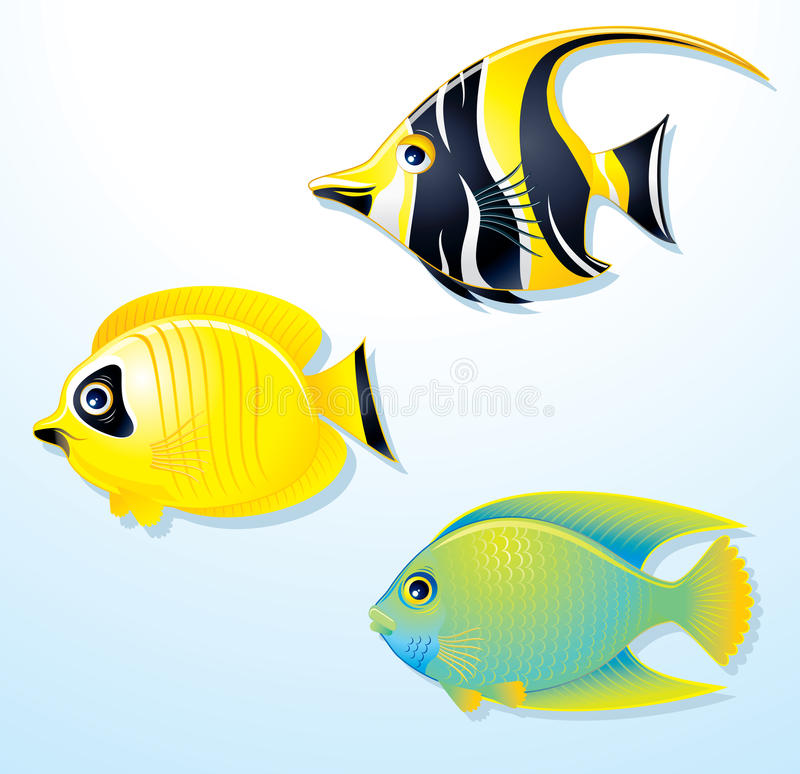 Download Exotic Fishes stock vector. Image of exotic, icon, shiny - 19217880