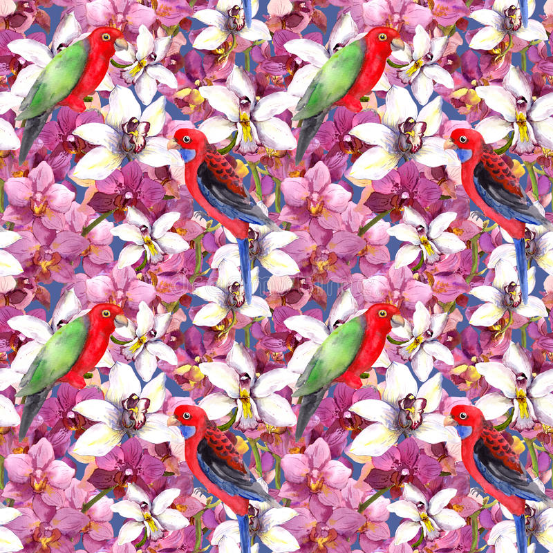 Free Exotic Floral Pattern - Parrot Bird, Blooming Orchid Flowers Royalty Free Stock Photo - 60077165