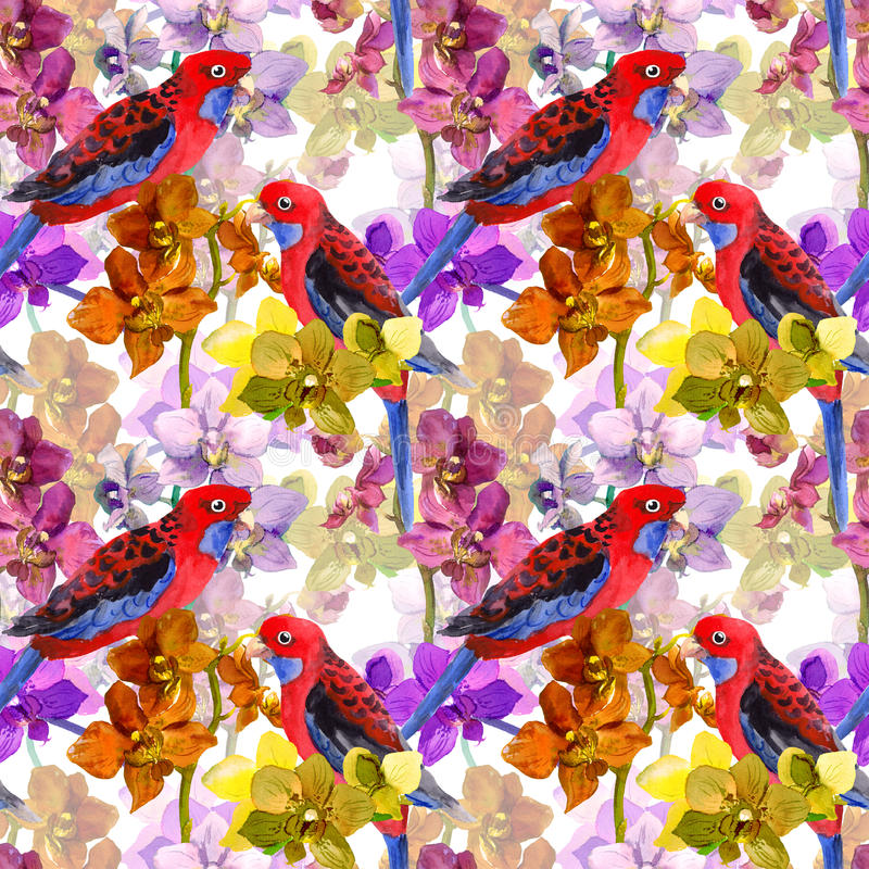Free Exotic Floral Pattern - Parrot Bird, Blooming Orchid Flowers Stock Photos - 60077673