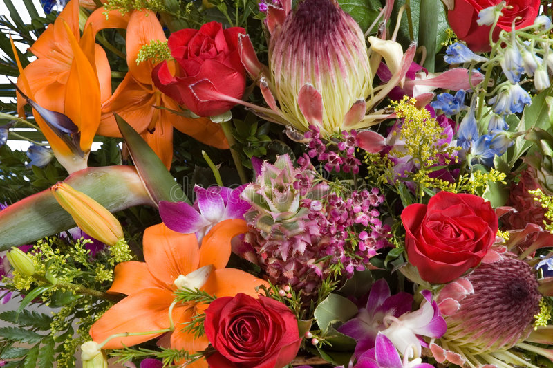 Exotic flowers arrangment royalty free stock images