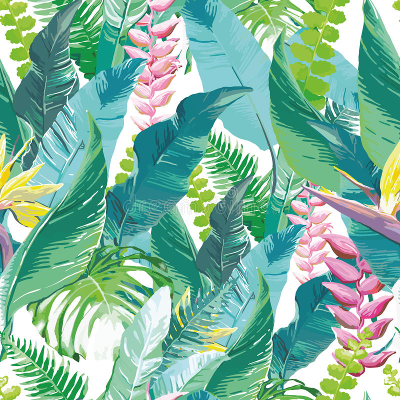 exotic flowers royalty free illustration