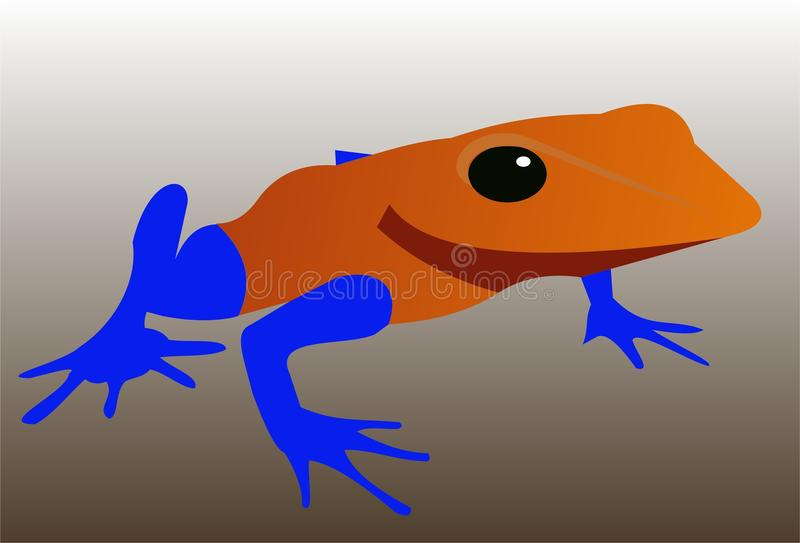 Exotic frog 3 stock photography